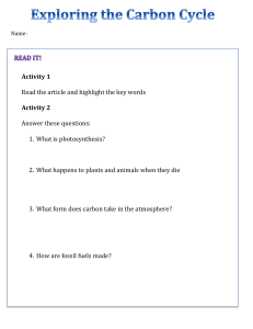 Lesson 2 - Carbon Cycle Work Booklet