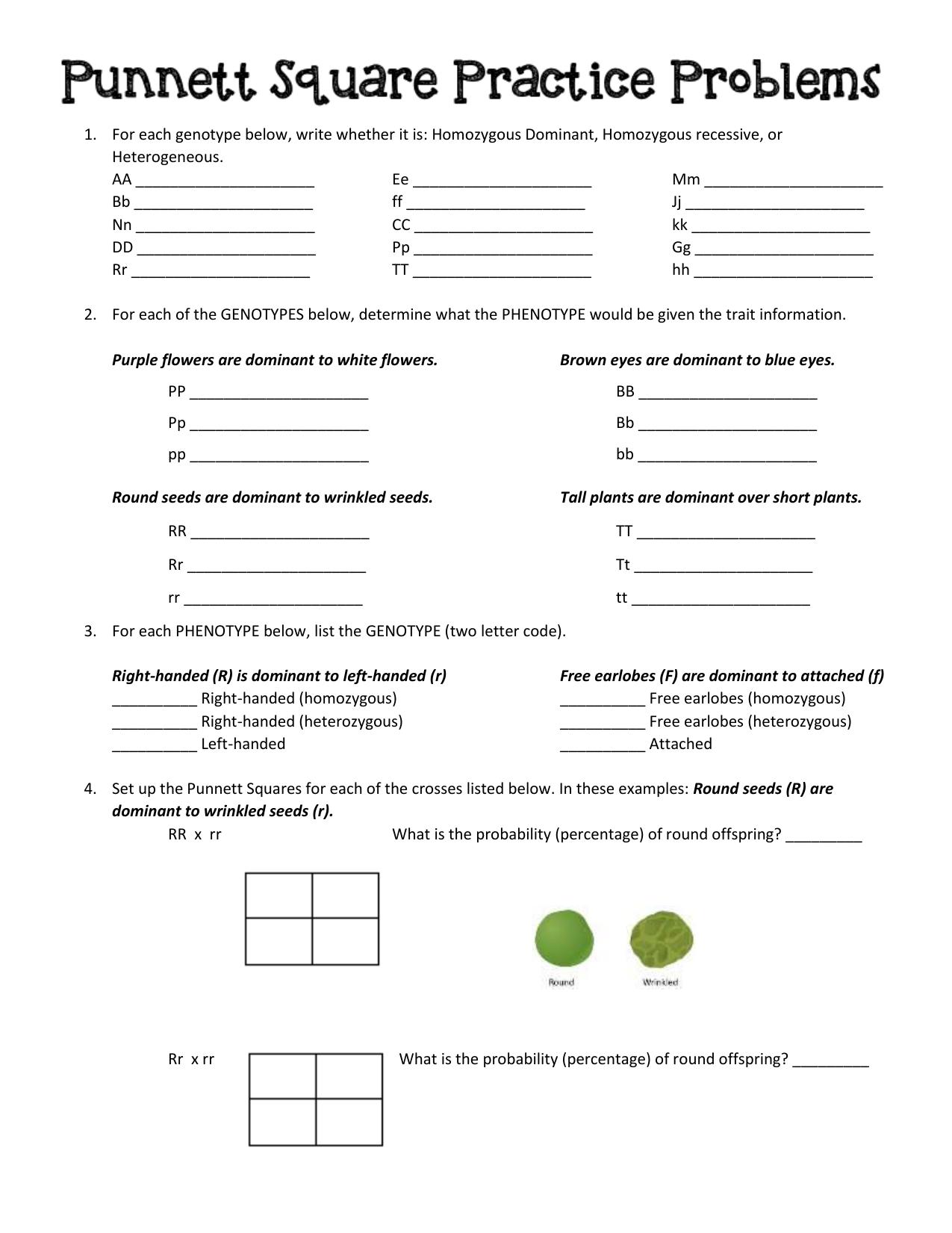 punnett square homework problems