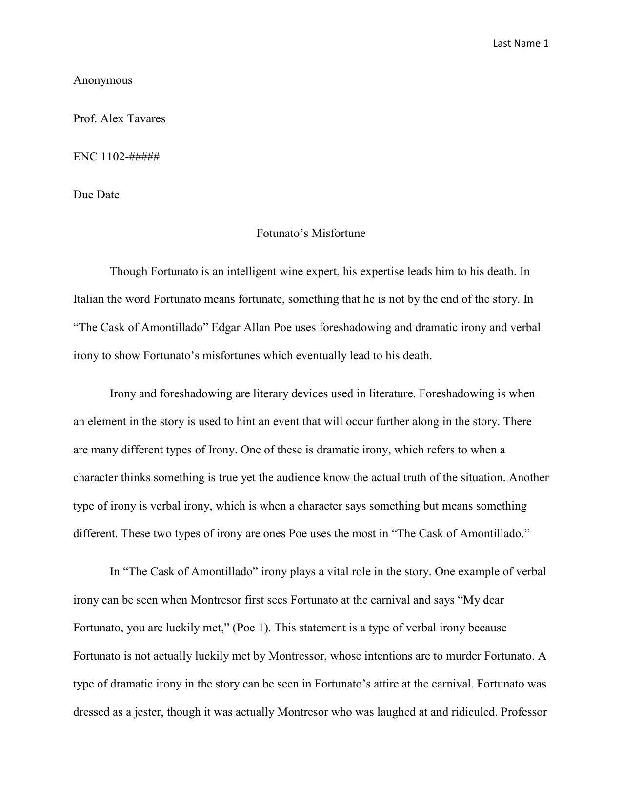 Irony in poes work essay