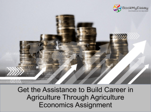 Avail Online Economics Assignment Help Service from Professional