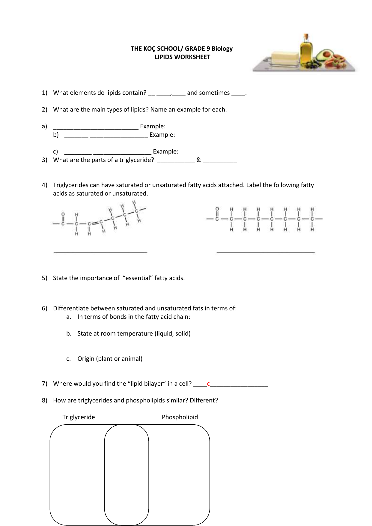 Lipid Worksheet