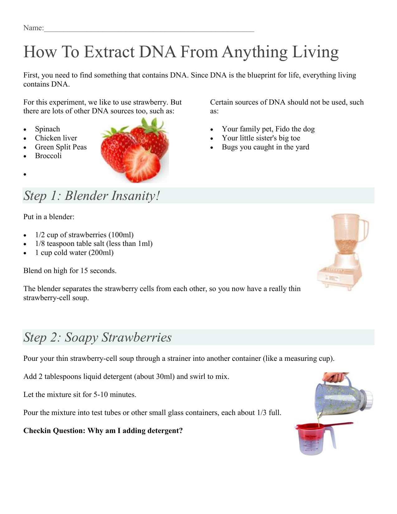 Strawberry Dna Extraction Lab - slidedocnow