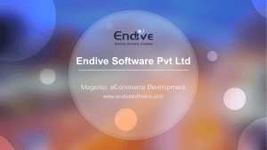 Magento eCommerce Development by Endive Software