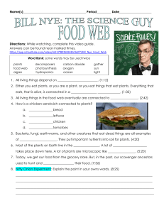 Bill Nye Food Web Video Question