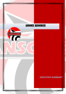 ansonex executive summary