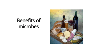 uses of microbes