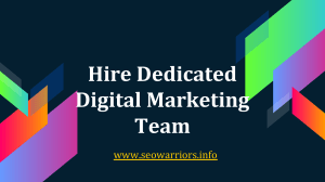 Hire Dedicated Digital Marketing Team | SEOWarriors