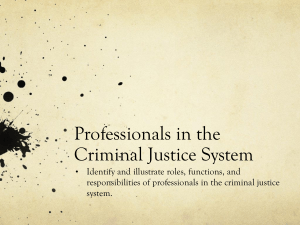 Professionals in the Criminal Justice System