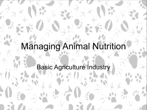 Managing Animal Nutrition