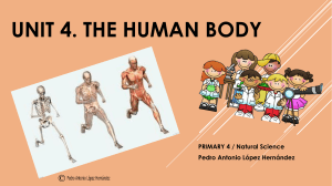 Unit-4-The-human-body