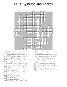 cells, systems and energy crossword