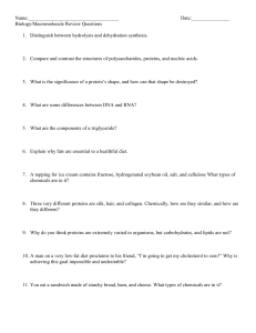 Macromolecule Review Questions