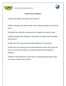 Animal Farm Chapter 5 Questions