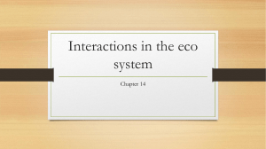Interactions in the eco system SAT