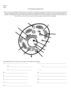 Animal Cell Unit Formative Assessment