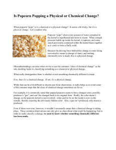 Is-Popcorn-Popping-a-Physical-or-Chemical-Change-READING
