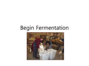 Fermentation and food related produts