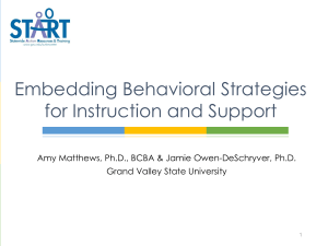 embedding behavioral strategies 17-18 handout