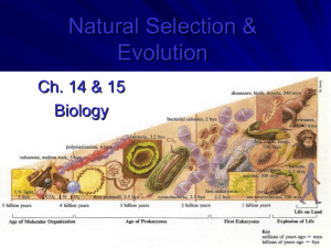 bio evolution ppt