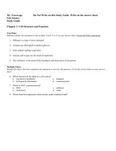 Chapter 2 (NEW) Study Guide w.Answers