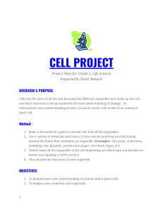 5th Grade Cell Project