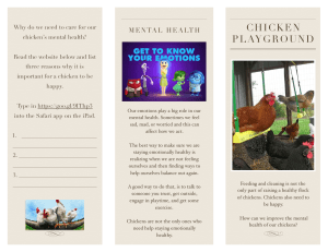 Chicken Playground Research