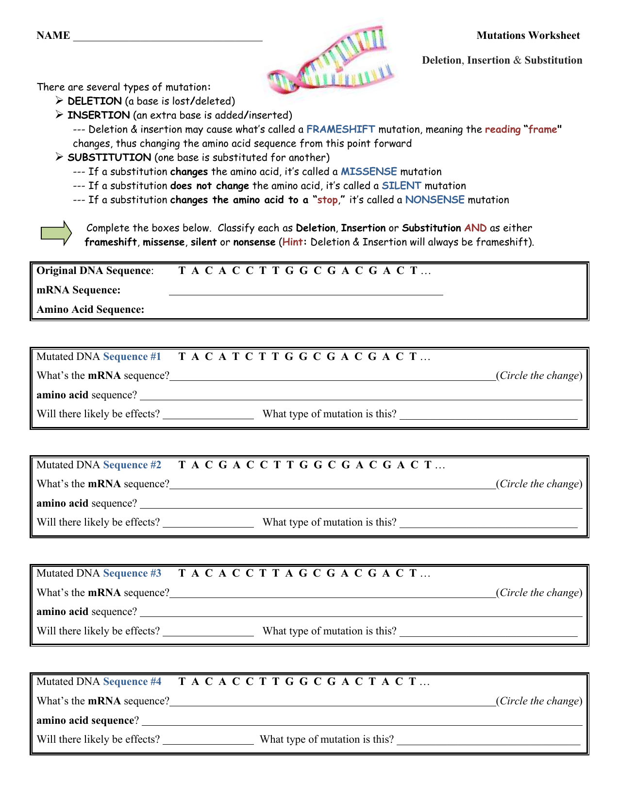 Dna Mutations Worksheet