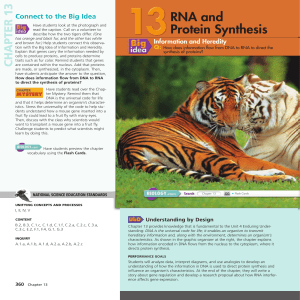 chapter 13 - rna and protein synthesis 1
