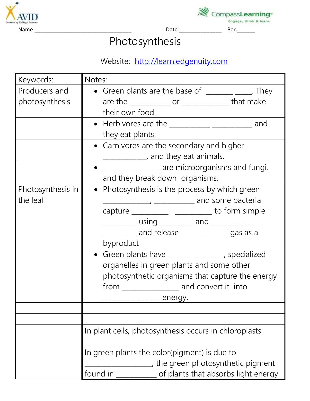 photosynthesis edgenuity notes