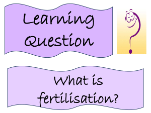 Lesson 6 - Fertilisation