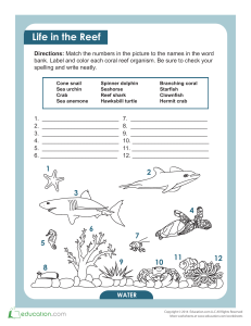 coral-reef-animals-and-plants matching worksheet