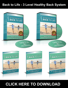 Back to Life PDF, eBook by Emily Lark - 3 Level Healthy Back System