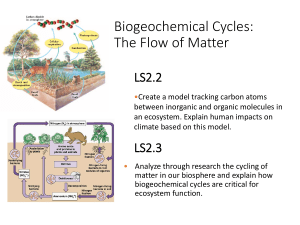 Carbon and Biogeochemical cycles Lesson