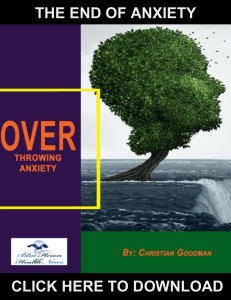 The End Of Anxiety PDF, eBook by Christian Goodman