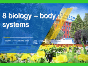 8 biology body systems review
