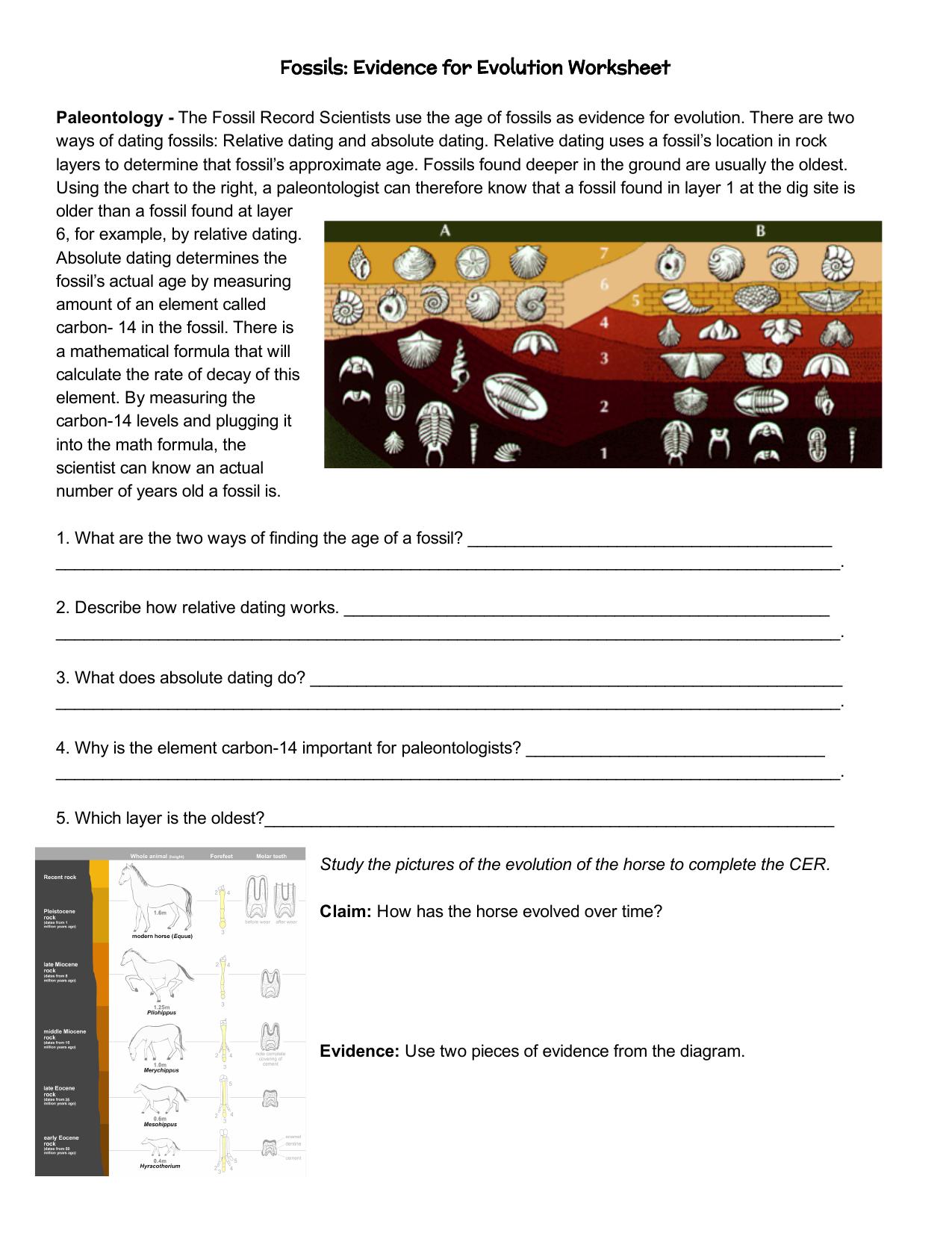 Fossils Evidence for Evolution WS Intended For Evidence Of Evolution Worksheet
