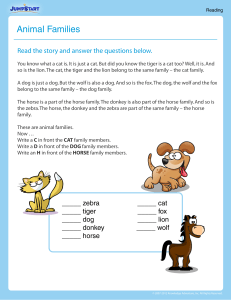 animal-families-reading