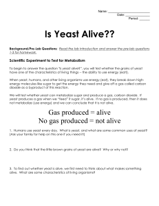 Is Yeast Alive Lab