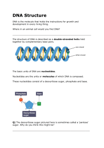 DNA Structure 1 - Intro