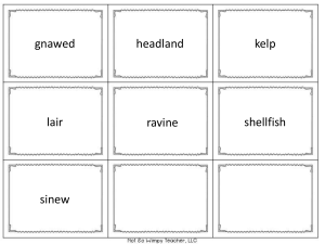 Island of the Blue Dolphins Vocabulary Match Reading Street