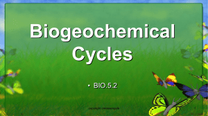 BIO.5.2- Biogeochemical Cycles