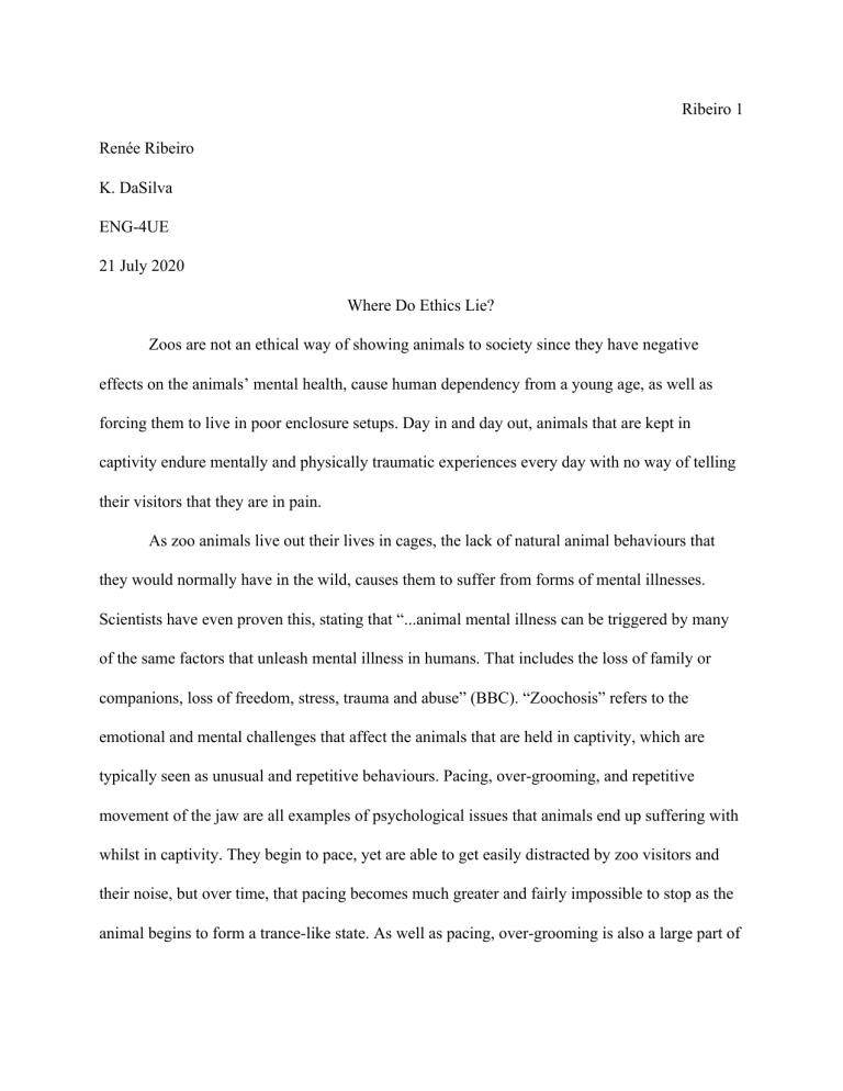 caging animals essay