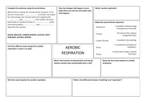 Aerobic-Respiration-Worksheet