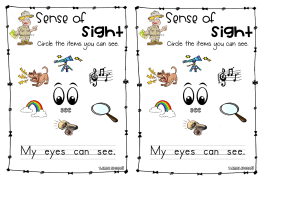 SenseOfSightWorksheet