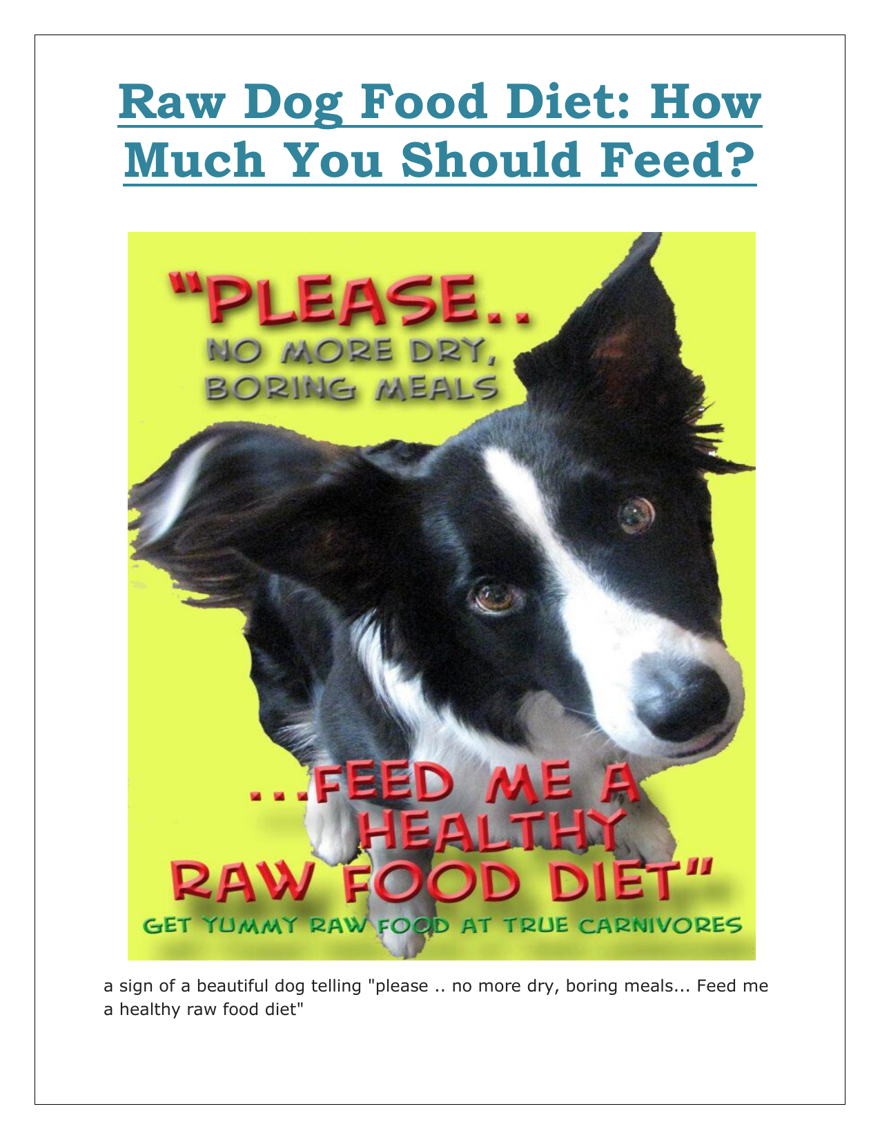 Raw Dog Food Diet How Much You Should Feed.docx