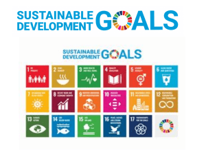 Sustainable Development Goals Lesson 1 No Poverty