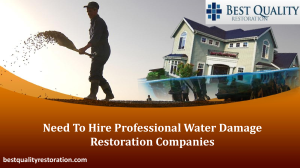 Need To Hire Professional Water Damage Restoration Companies