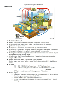 biogeochemical cycles cheat sheet
