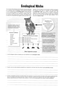 Ecological Niches Worksheet