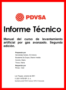 126189769-Manual-LAG-PDVSA-002-pdf